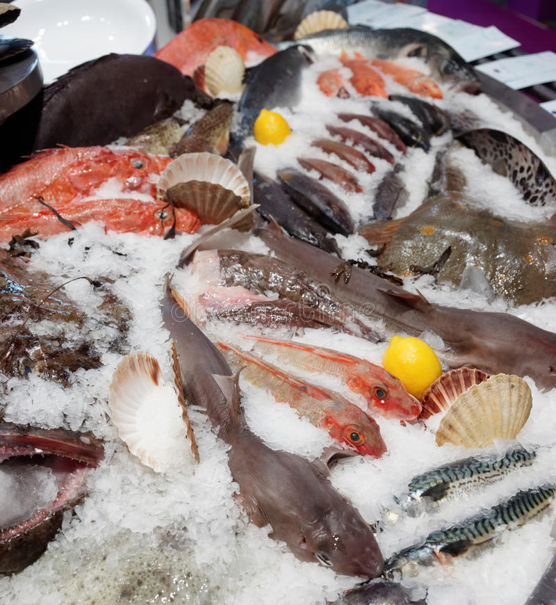 Широкий выбор рыб на дисплее рынка стоковое изображение