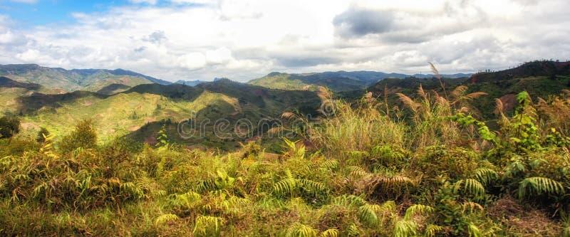 Широкий малагасийский ландшафт стоковые изображения rf