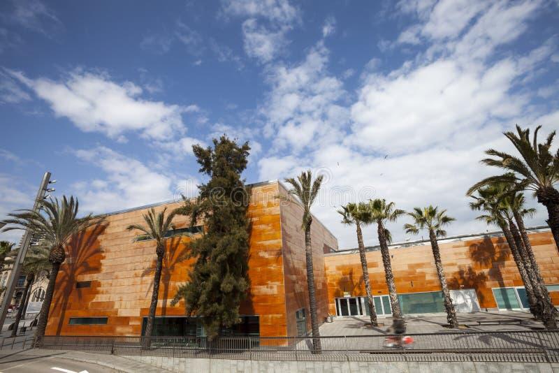 Широкий панорамный взгляд, оранжевое здание и пальмы синь заволакивает небо стоковое изображение rf