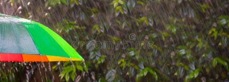 Широкоцветный зонтик с брызгами дождя и кустом стоковая фотография