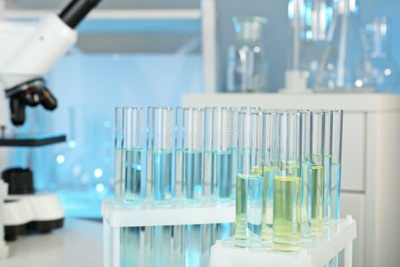 Шкаф с пробирками в лаборатории, крупном плане стоковое фото rf