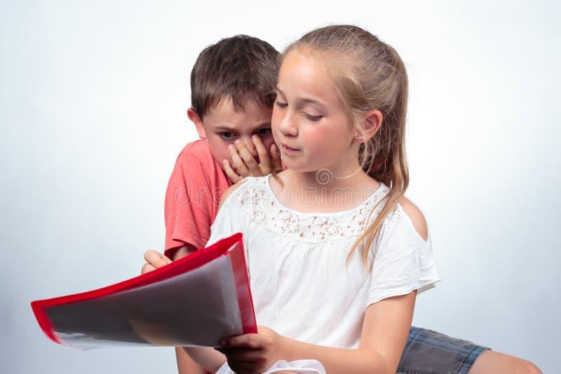 Школьница и школьница изучая совместно стоковое изображение rf