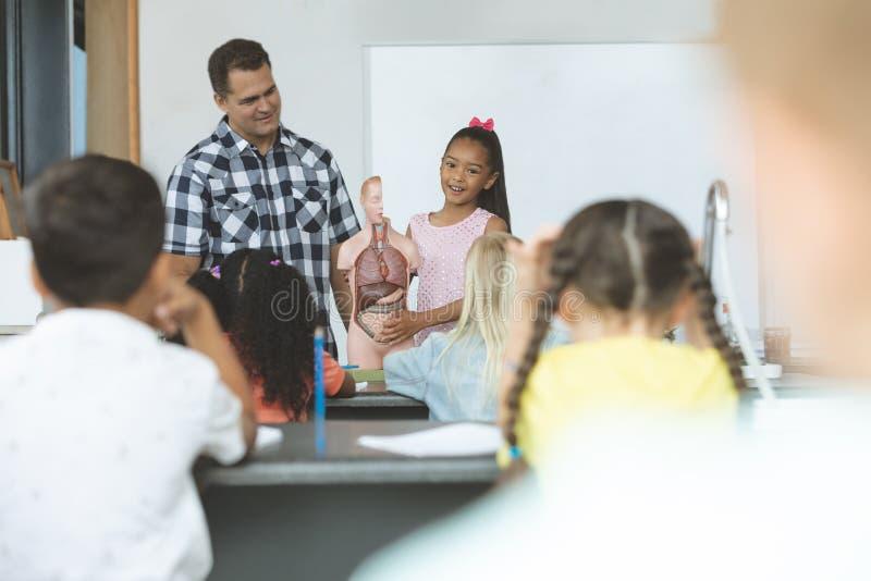 Школьница объясняя его одноклассникам действовать спасибо тела человеческих фиктивный скелет стоковая фотография