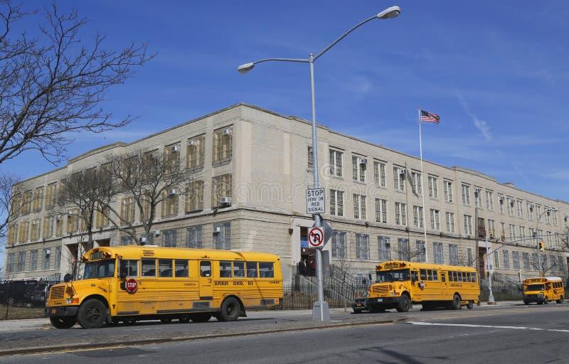 Школьные автобусы в фронте общественной школы в Бруклине стоковое фото