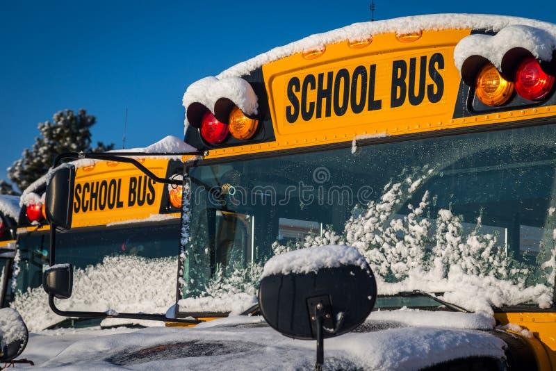 Школьные автобусы зимы стоковые изображения rf