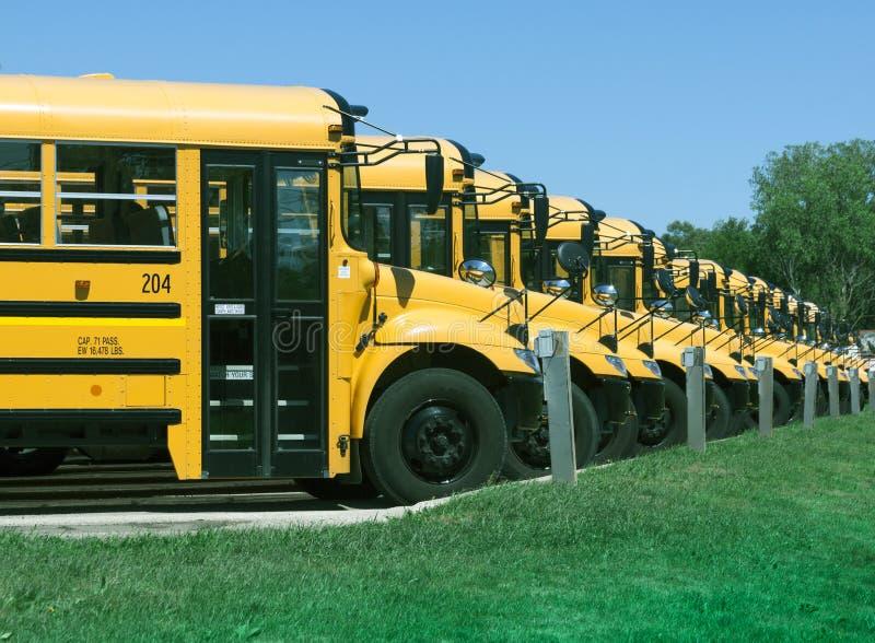 Школьные автобусы стоковые изображения rf