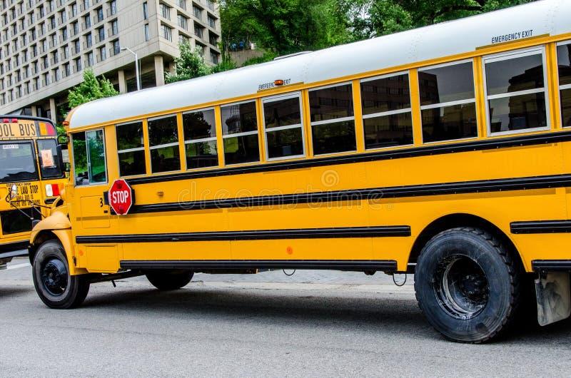 Школьный автобус/шины в городе стоковые фото