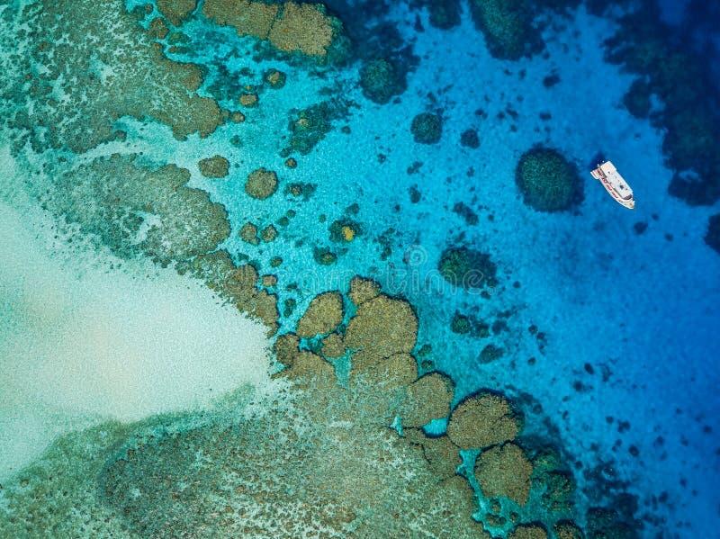 Шлюпка пикирования рядом с рифом стоковая фотография rf