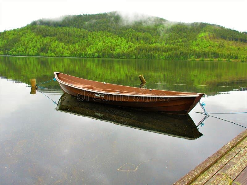 Шлюпка строки Брауна отражая с лесом как предпосылка стоковое фото