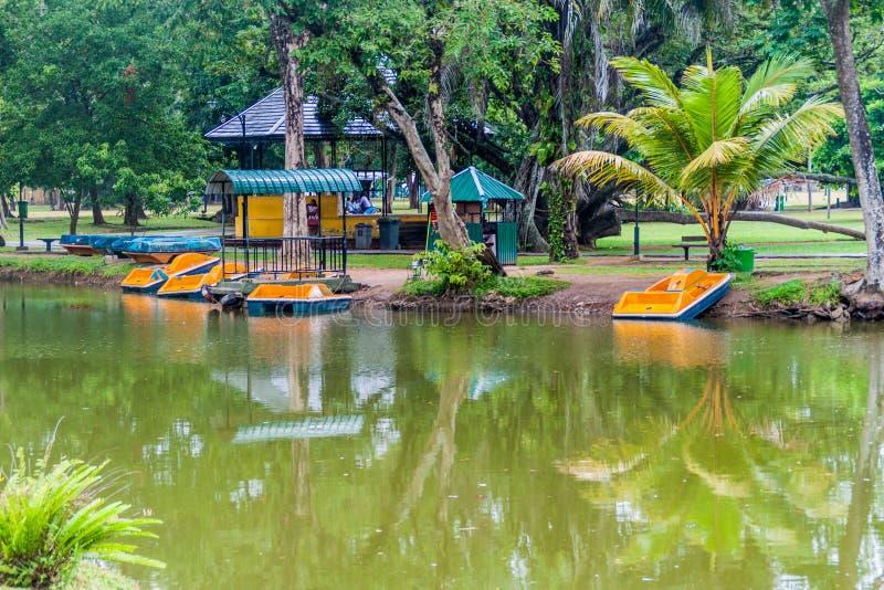 Шлюпки на пруде в парке Viharamahadevi в Коломбо, Lan Sri стоковое фото rf
