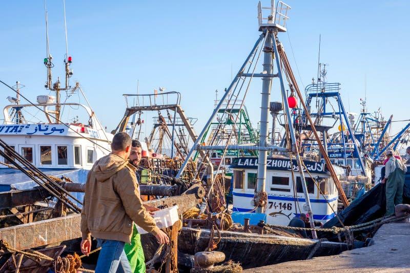 Шлюпки отделки в порте Essaouira стоковая фотография rf