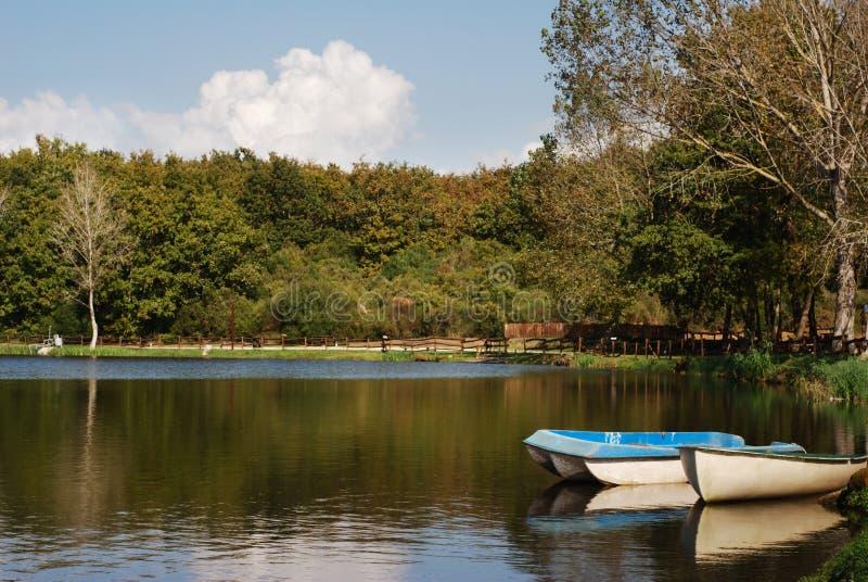 Download Шлюпки отражая на озере стоковое изображение. изображение насчитывающей rowing - 6855185