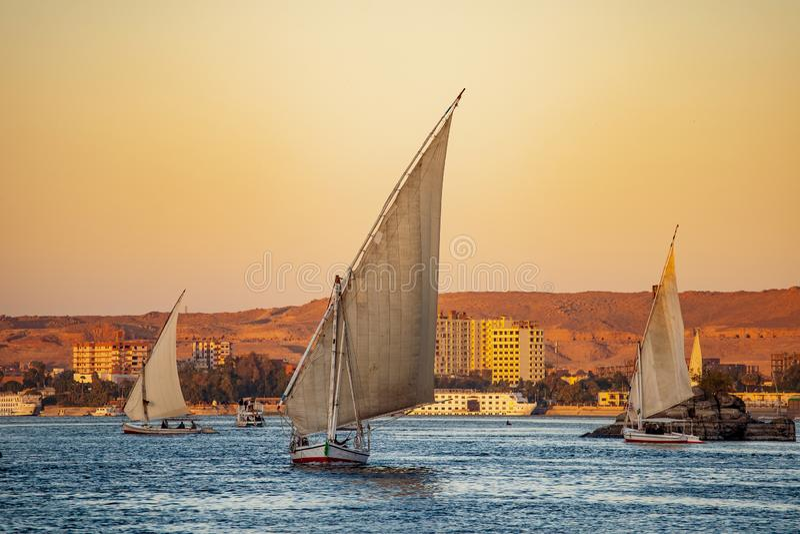 Шлюпки Felluca туристские на реке Ниле на заходе солнца в Луксоре стоковая фотография rf