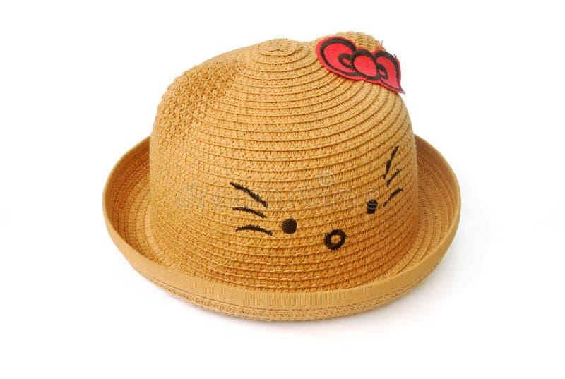 Шляпа Брауна r стоковое фото