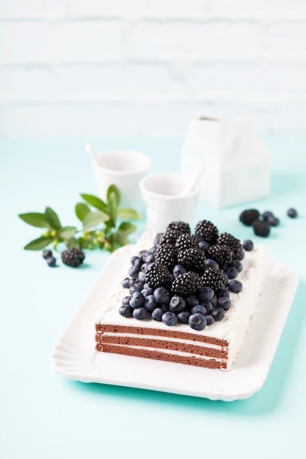 Шоколадный торт с сливк, голубиками и ежевиками стоковое изображение