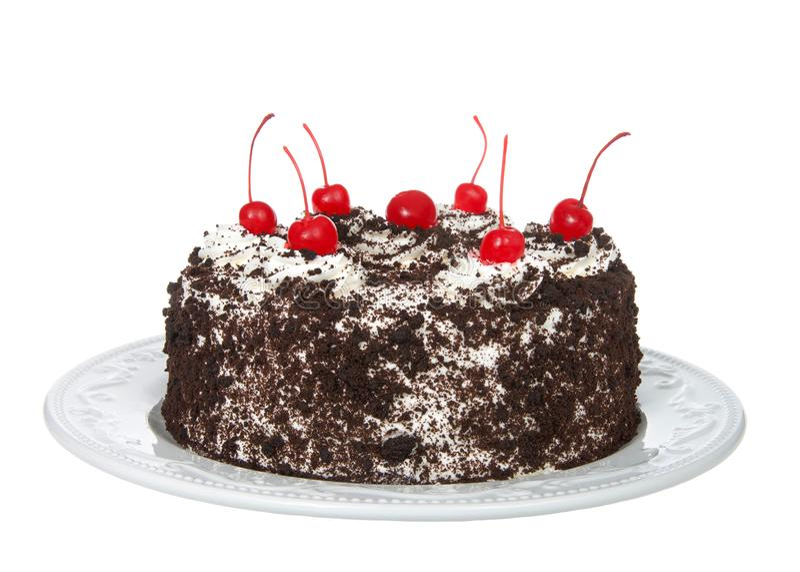 Шоколадный торт черного леса изолированный на белизне стоковая фотография rf