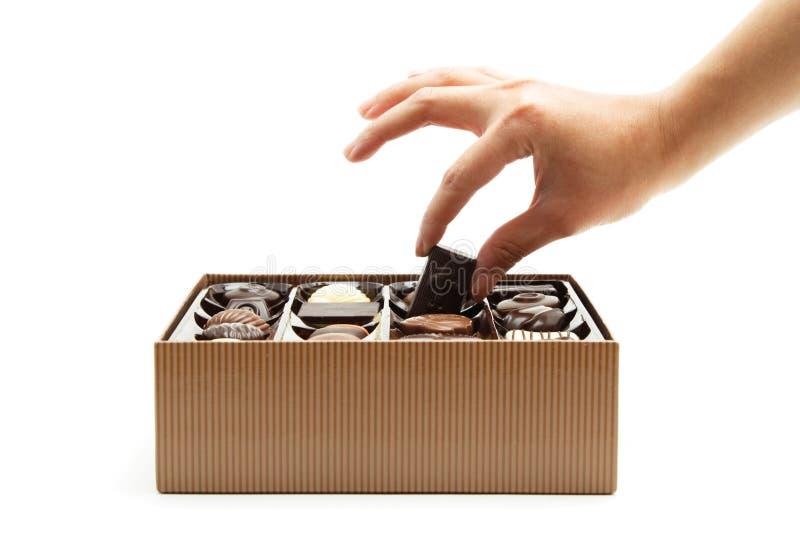 шоколады стоковые фотографии rf