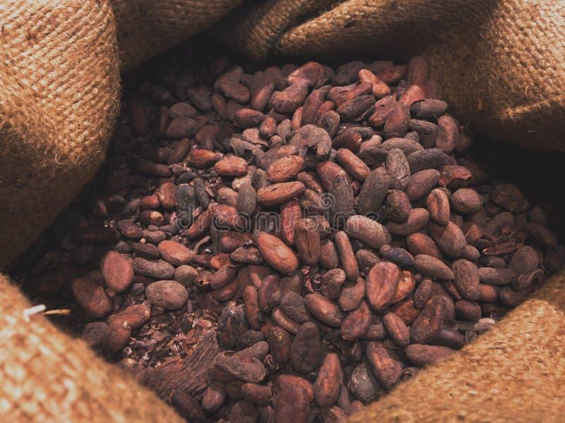 Шоколад Nibs в sac стоковые изображения
