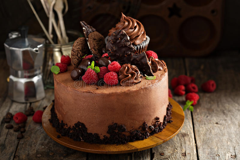 Шоколадный торт с замораживать и поленикой ganache стоковое фото rf