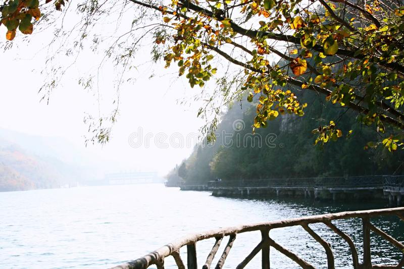 Шоры Цинтянхе, Цзяодзуо, Хенан, Китай стоковое изображение rf