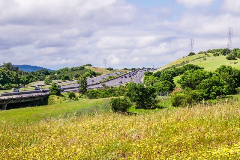 Шоссе в области San Francisco Bay, wildflowers зацветая на холмах парка графства Edgewood, Кремниевой долины, Калифорния стоковое фото