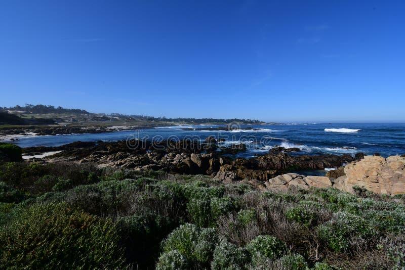 Шоссе Калифорния 1 время весны стоковые фотографии rf