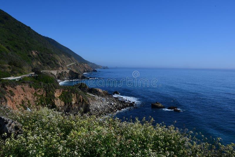 Шоссе Калифорния 1 время весны стоковое изображение