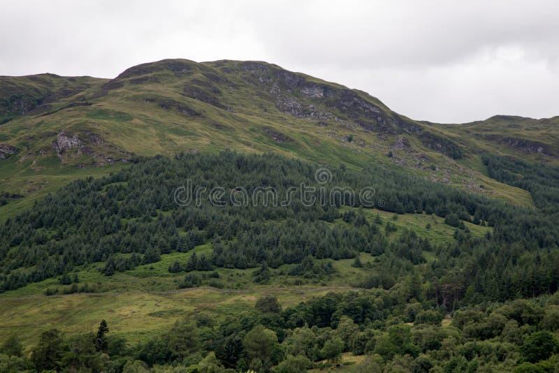 Шотландский горный склон гористой местности на день overcast стоковые изображения