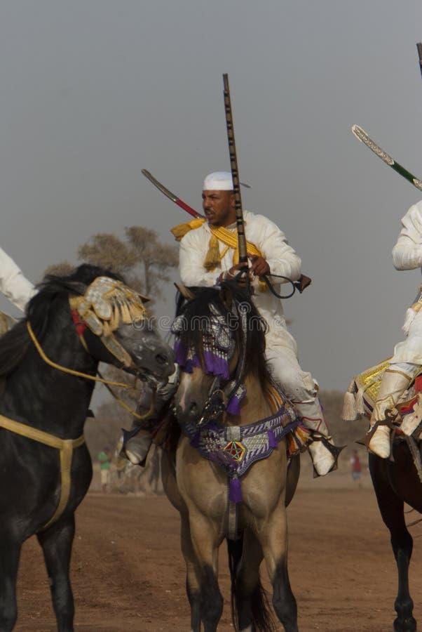 Шоу и предварительные квалификации для традиционной кавалерии вызвали ФАНТАЗИЮ или TBOURIDA в южном Марокко стоковые изображения rf