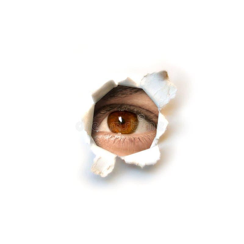 шпионка глаза стоковое фото