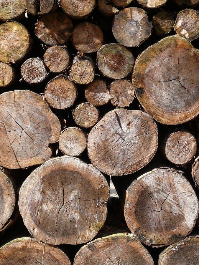Штабелированная древесина стоковые изображения