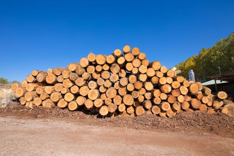 Штабелированное деревянное вносит дальше лесопилку в журнал стоковая фотография rf