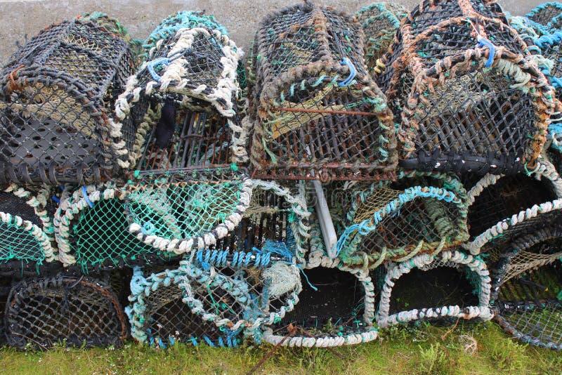 Штабелированные строки баков омара стоковая фотография rf