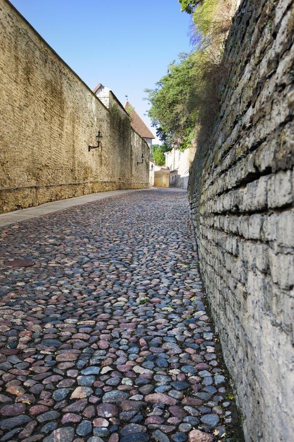 Штабелированная мостоваая и впечатляющие кирпичные стены погода лопасти городка башни tallinn thomas залы эстонии города старая стоковые фотографии rf