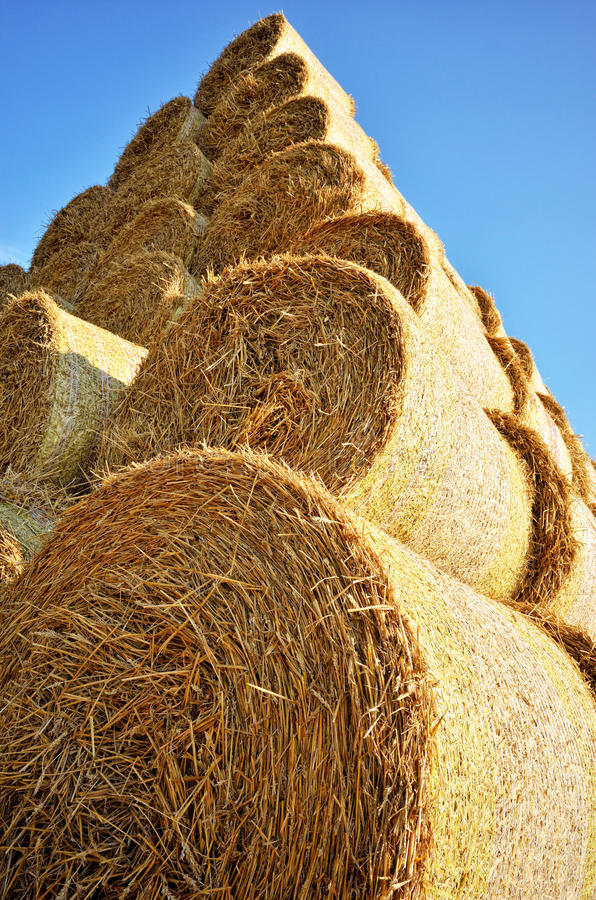 Штабелированные связки сена стоковые изображения rf