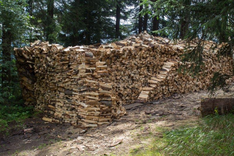 Штабелированный деревянный тимберс сосны стоковое изображение