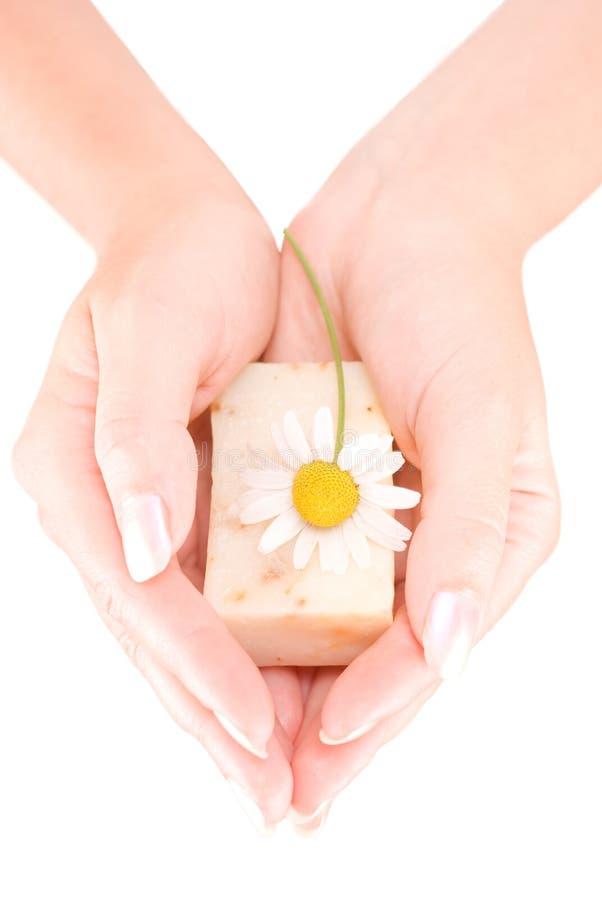 штанга вручает женщину мыла удерживания s стоковое изображение