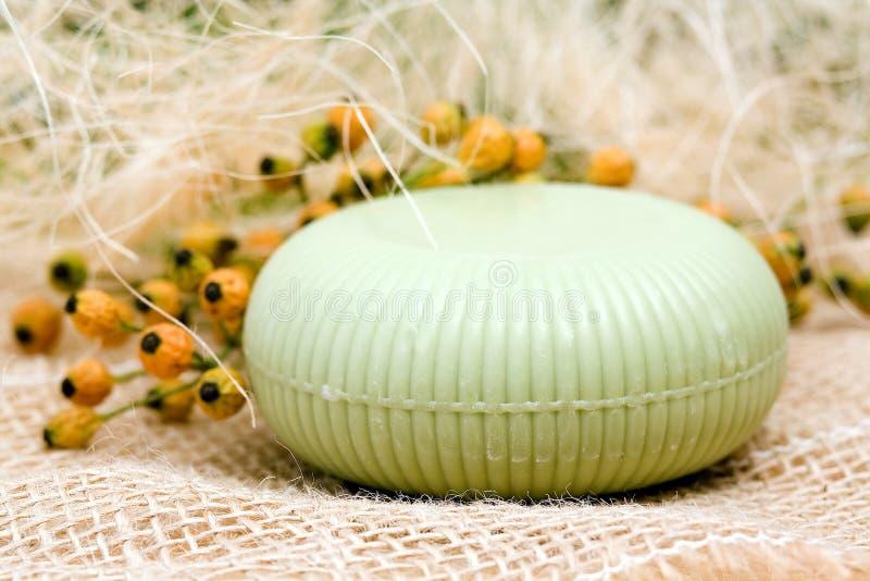 Штанга мыла зеленой оливки стоковые изображения rf