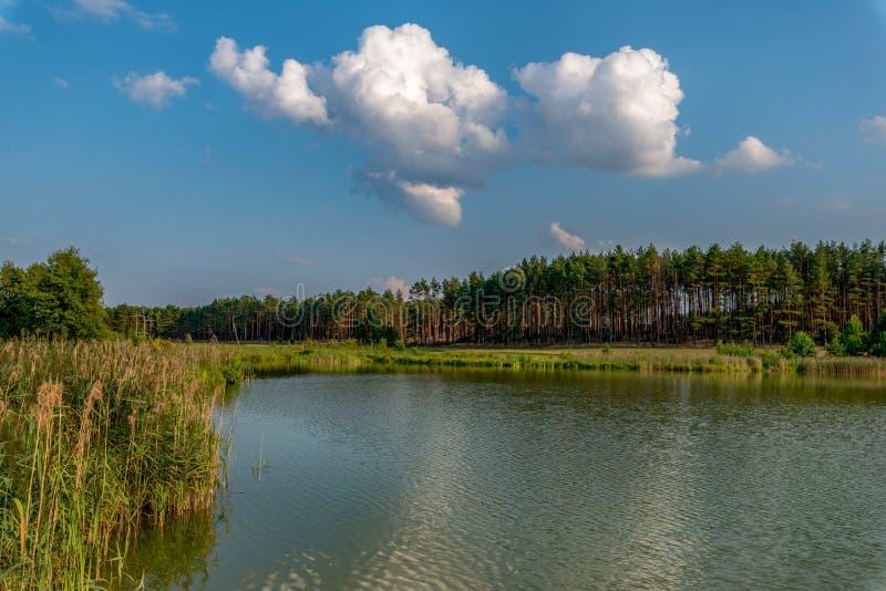 2 штанги на пристани рядом со спокойным озером стоковые фотографии rf