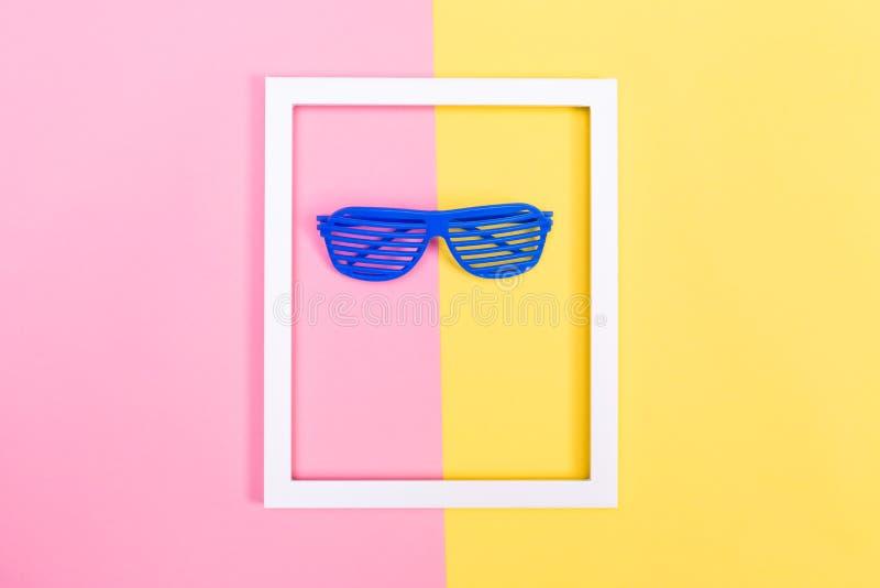 Штарка затеняет солнечные очки на живой предпосылке стоковое фото rf