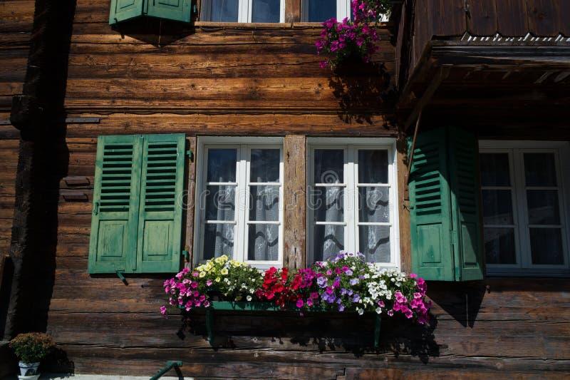 Штарки окно и цветки стоковая фотография