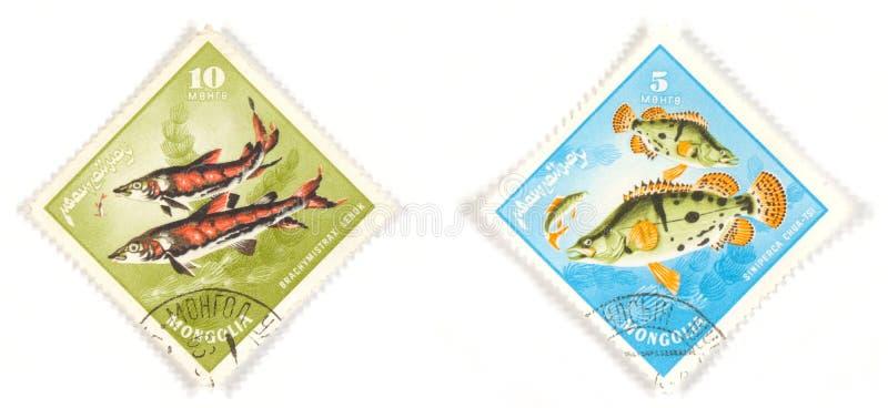 штемпеля Монголии рыб стоковые фотографии rf