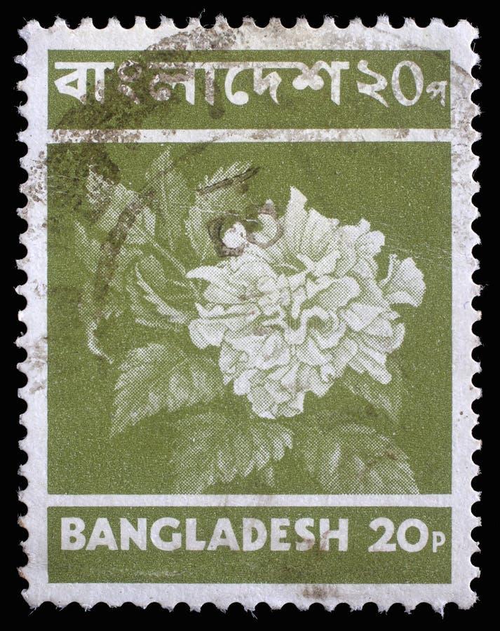 Штемпель напечатанный в Бангладеше показывает цветок стоковые изображения