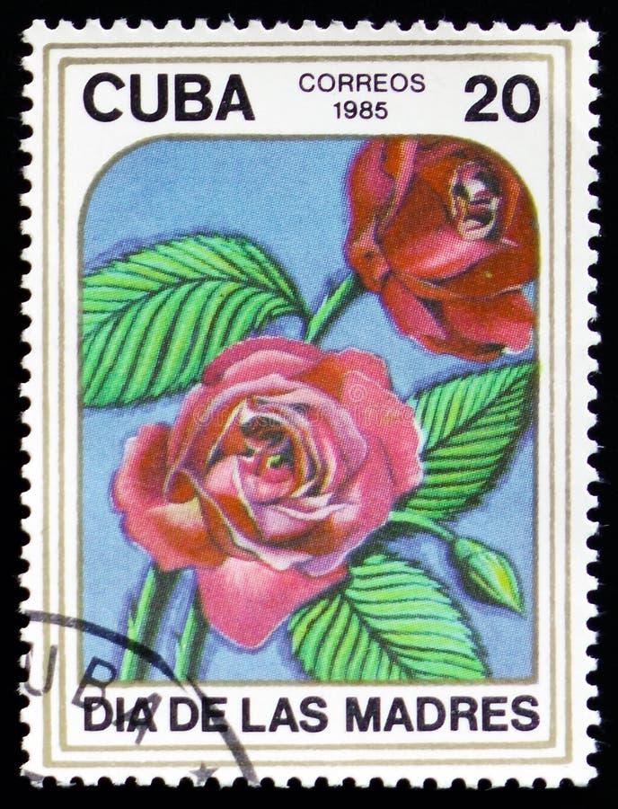 Штемпель напечатанный в изображении выставок КУБЫ красные розы стоковое фото