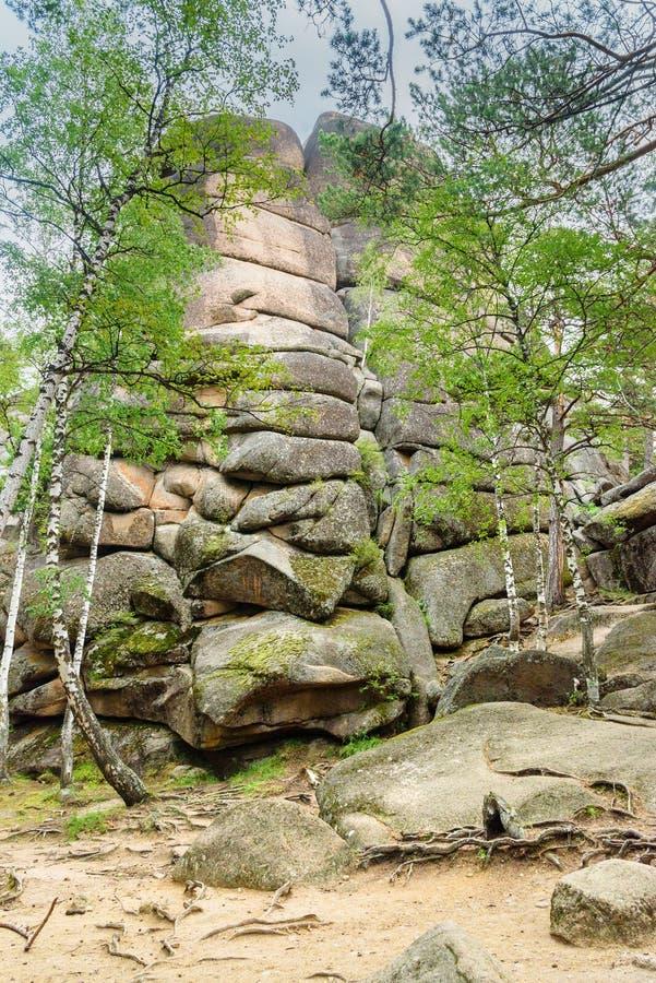 Штендеры первое русское святилище природы Stolby запаса Около Krasnoyarsk стоковая фотография rf