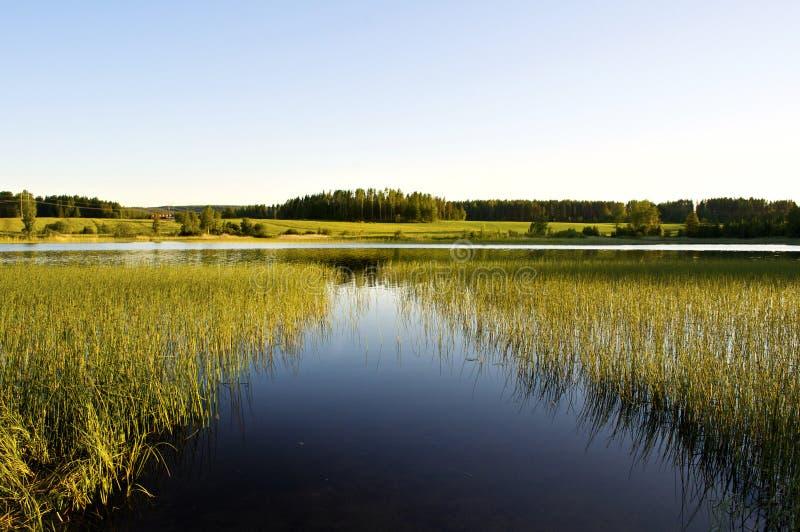 штилевое озеро стоковая фотография rf