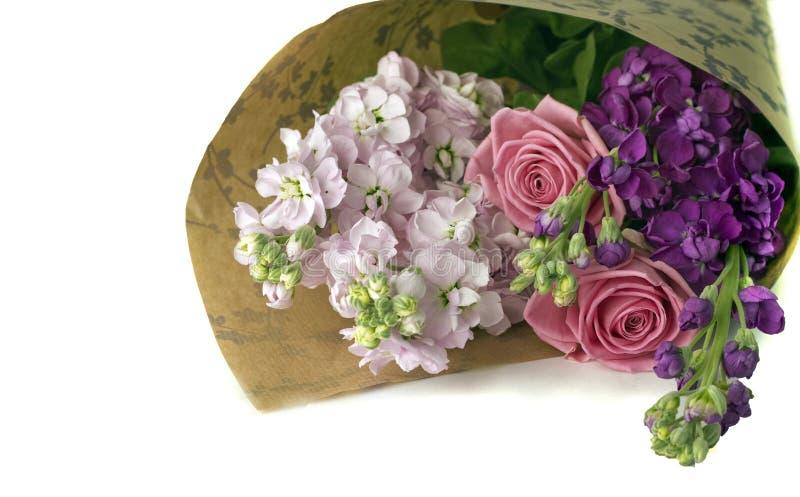 штоки роз пука розовые стоковые изображения rf