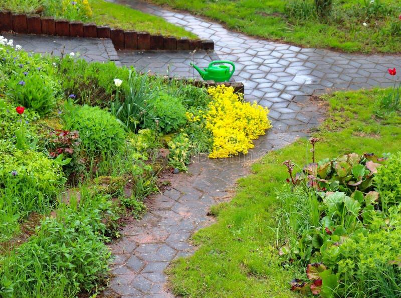 Шторм весеннего дождя в саде в Германии стоковое изображение rf