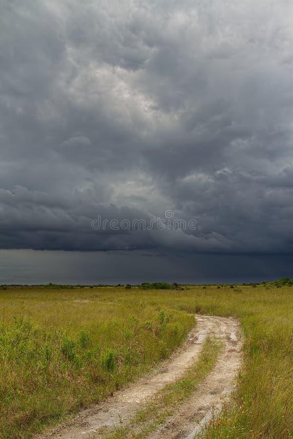 Шторм над Everglades-1 стоковые изображения rf
