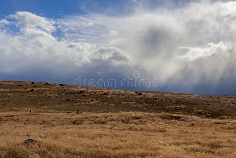 Шторм причаливая в Новой Зеландии стоковая фотография rf